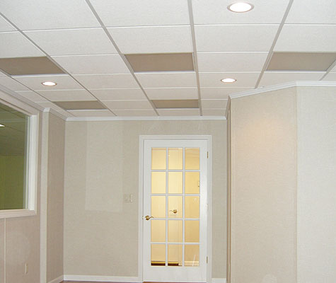 Total Bat Finishing Has A Ceiling System Uniquely Suited For Bats Drop Is Ideal Giving You Access To Plumbing And