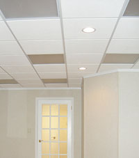 Basement Ceiling Tiles for a project we worked on in Virginia, Minnesota and Wisconsin